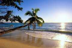 beach-sunset-free-beach-wallpaper-blirknet-587fbe3f3df78c17b6b1c5d1